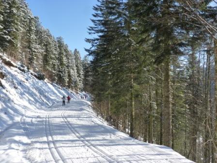 2017 Ski de fond Loisirs – par cnar le 29/01/2017 @ 12:27