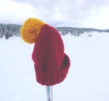 2018 Ski de fond Loisirs – par cnar le 16/02/2018 @ 19:37